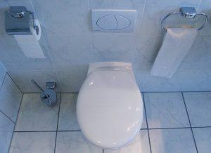 Sanitärreinigung und Hausreinigung in Berlin und Umgebung
